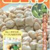 オリエンタルビーン ヒヨコマメ 10ml [1245] 【郵送対応】 | 【種子】,【野菜】,【